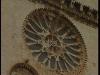 27-cattedrale-di-trani