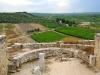 06 - Area archeologica Canne della battaglia